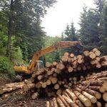 Pierre Porchet - Entreprise forestière